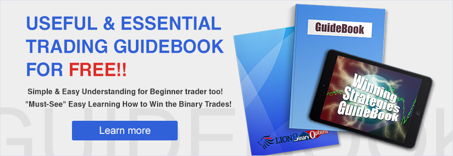 Hirose financial uk ltd-lion binary option